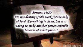 Swine-flu…-is-Christianity-to-blame-attachment