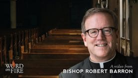 Bishop-Barron-Comments-on-Why-Christians-Leave-Church-attachment