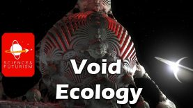 Void-Ecology-attachment
