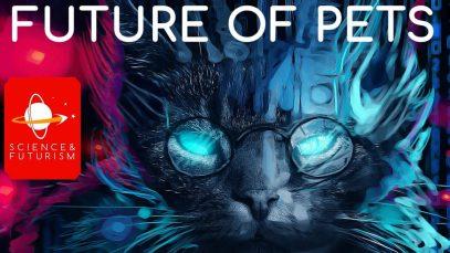 Future-Pets-attachment