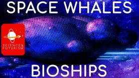Space-Whales-amp-Bioships-attachment
