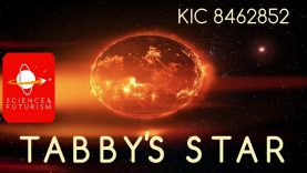 Tabby39s-Star-attachment