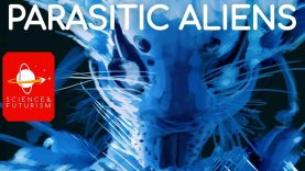 Parasitic-Aliens-attachment