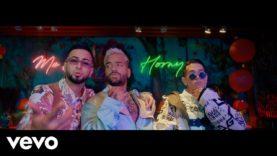 Maluma – Parce ft. Lenny Tavárez, Justin Quiles