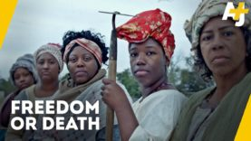 THE LARGEST SLAVE REBELLION WAS HIDDEN FROM U.S HISTORY